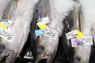 Hawaii-Fish-Auction-Jennifer-Flickr-CC-BY-NC-2-0-small-600x320
