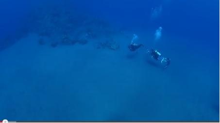 Sea&Learn about Oceans on Saba Island