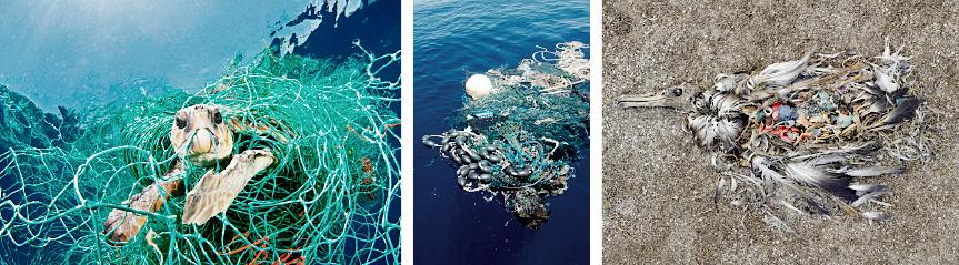 Oceanamp_plastic_problem